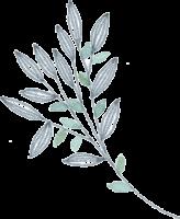 Branche filigrane